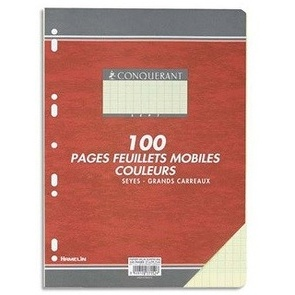 COPIES SIMPLES GRANDS CARREAUX FORMAT 210*297 100 PAGES  80G COULEUR JAUNE SEYES CONQURRANT SEPT