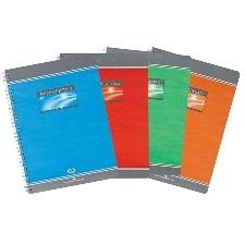 CAHIER GRANDS CARREAUX 180 PAGES 210x297 CONQUERANT REL. INTEGRALE