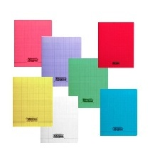 CAHIER GRANDS CARREAUX 32 PAGES 170X220 POLYPRO COUL- ASS