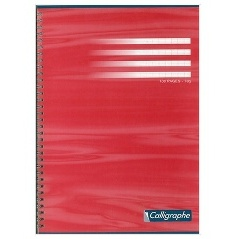 CAHIER 100 PAGES GRANDS CARREAUX CLAIREFONTAINE FORMAT A4 -210*297 MM (GRAND FORMAT)
